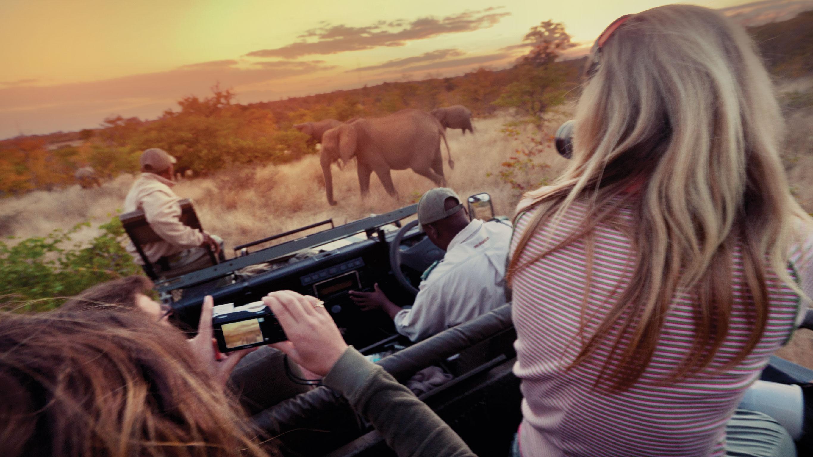 Image of Amboseli Safari Experience