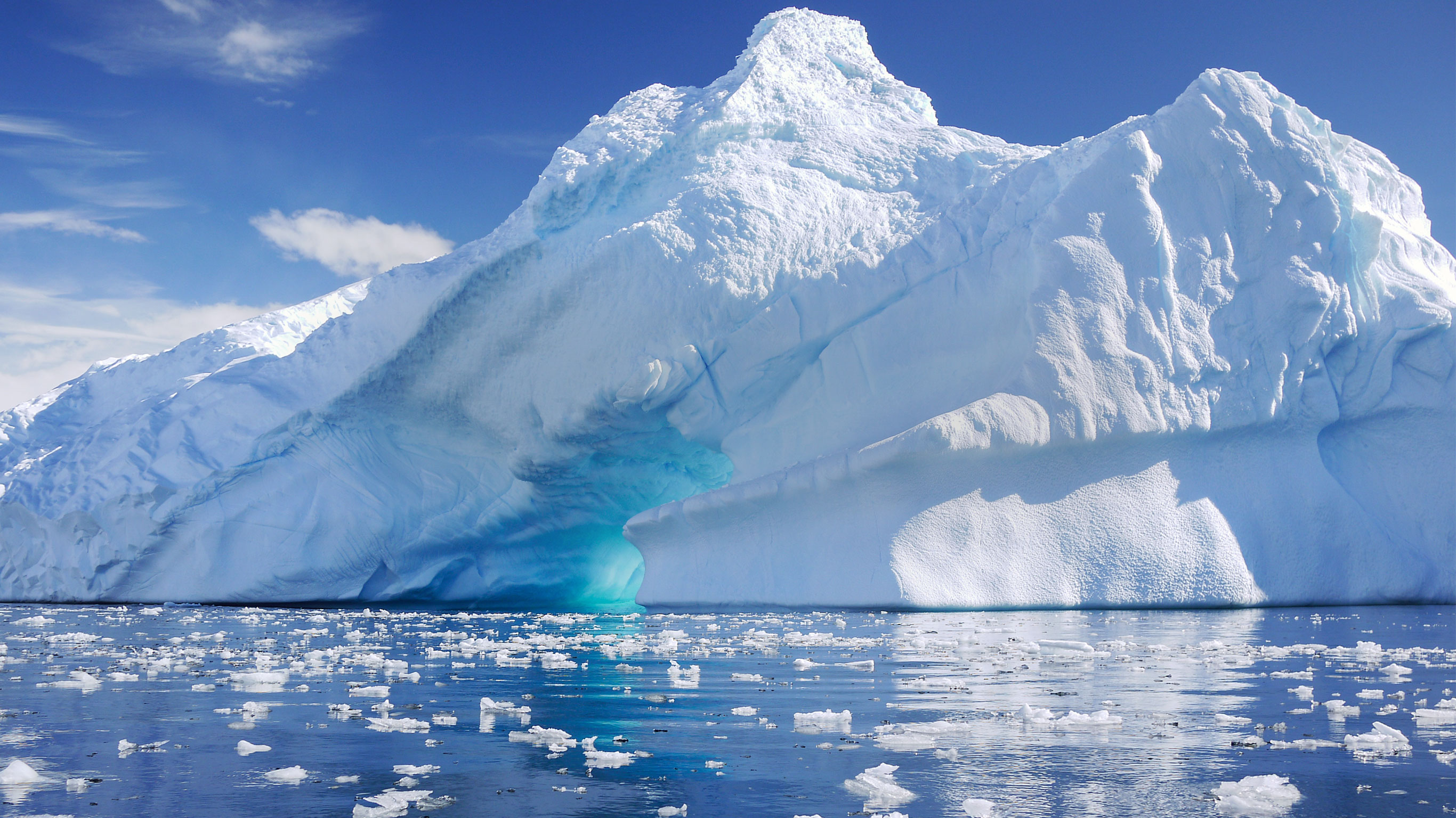 antarctica The best travel, food and culture guides for antarctica - local news & top things to do.