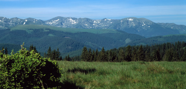 Trekking in Transylvania