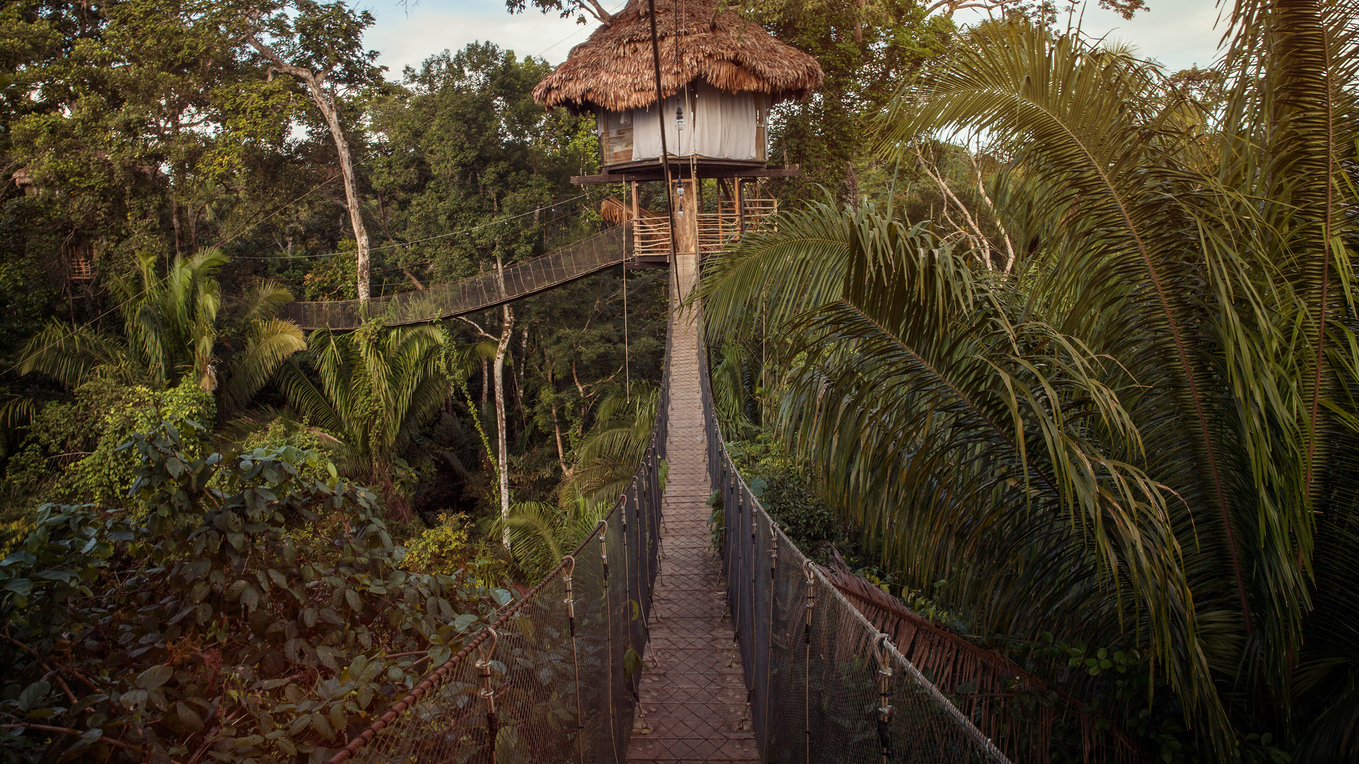 inland-amazon