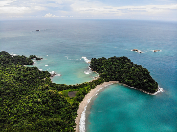 every green and blue comes to life at Manuel Antonio State Park
