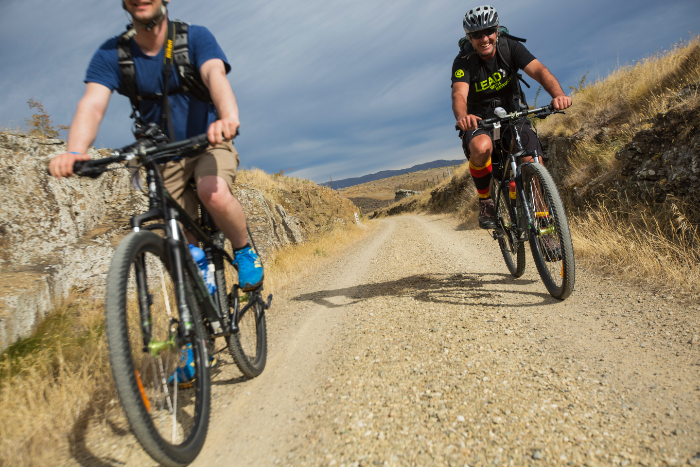 from cruisers to mountain bikes we'll make sure you're safely ready to roll