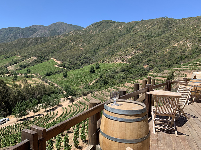 The payoff after a bike ride up a terraced vineyard in Colchagua Valley