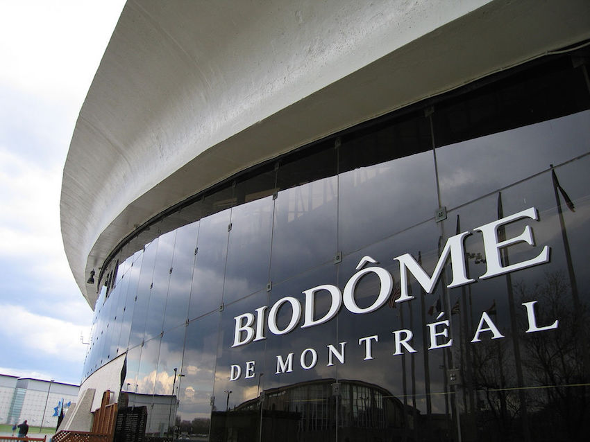Explore the many ecosystems at the Biodrome. Photo courtesy Tom C.