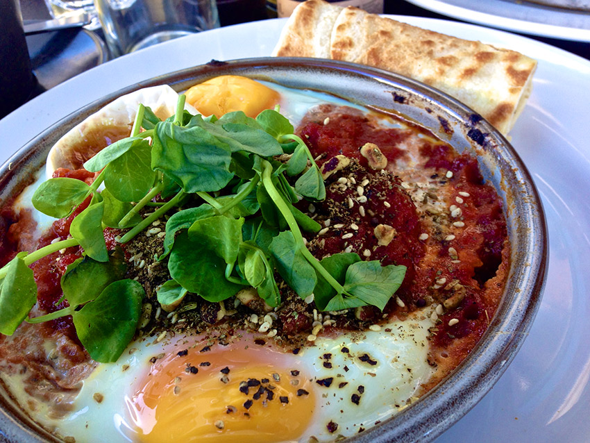 Shakshuka is delicious for brunch. Photo courtesy Katherine L.