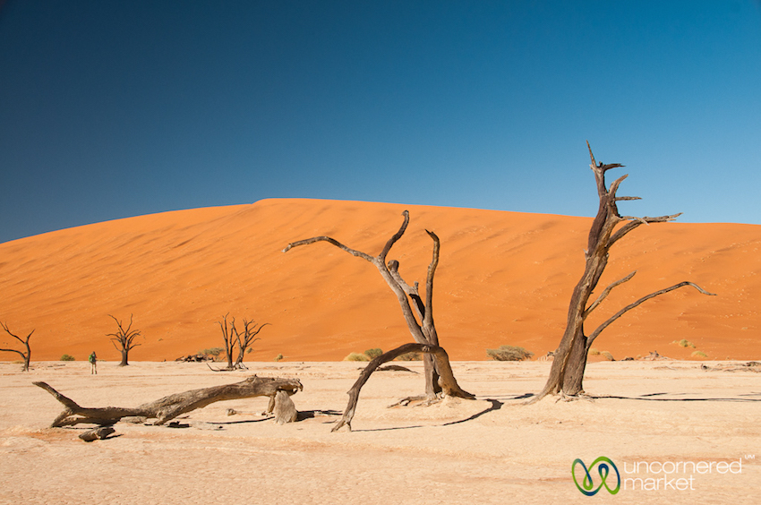 Like something straight from a Dali painting, but Deadvlei is all natural.