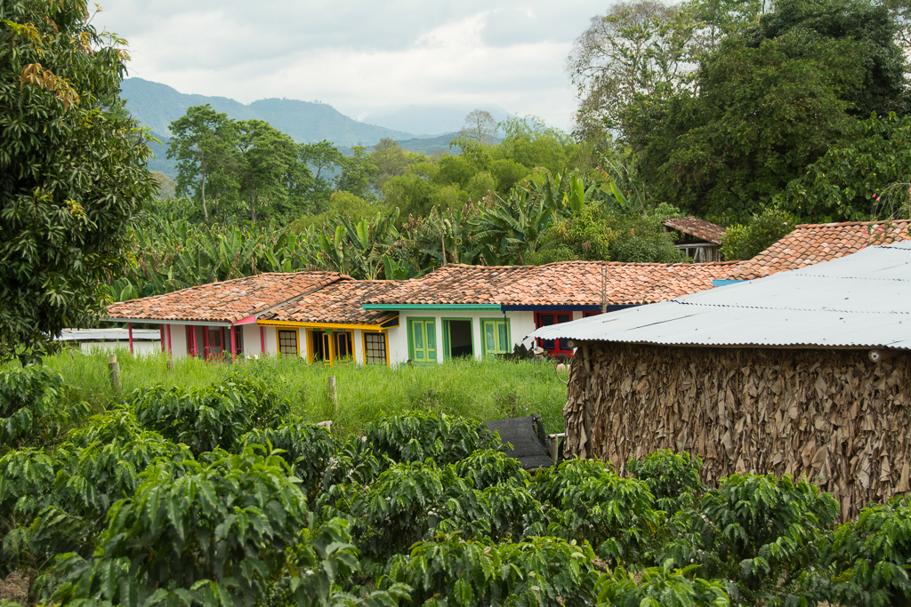 The top 8 things to see and do in Colombia