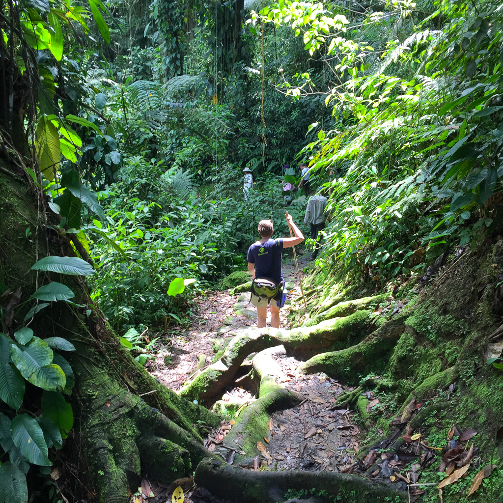 Climbing through the jungle up to the Lost City.