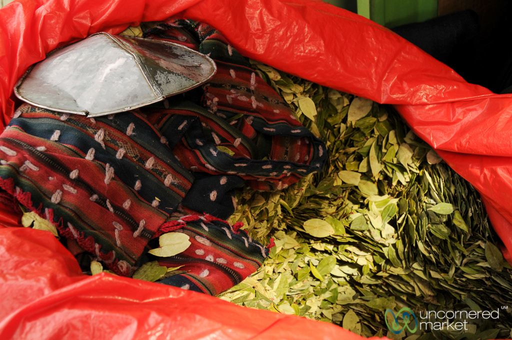 Coca leaves, one of the miners' staples.