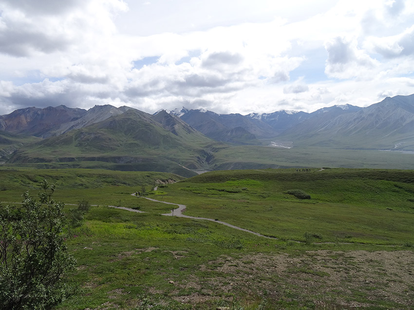 People are completely dwarfed by the landscape of Denali National Park.