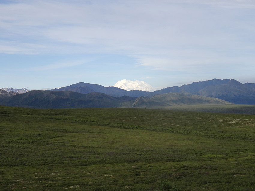 Denali is so large it creates its own weather system.