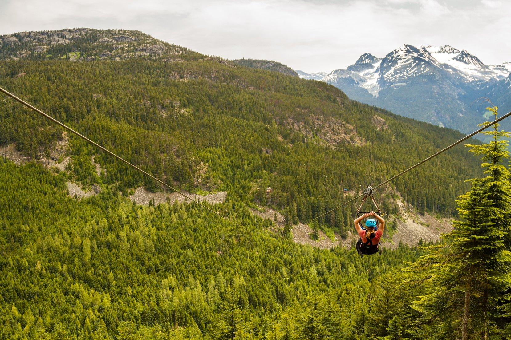 Ziplining across Whistler's peaks is a thrilling way to explore the dramatic beauty of the area.
