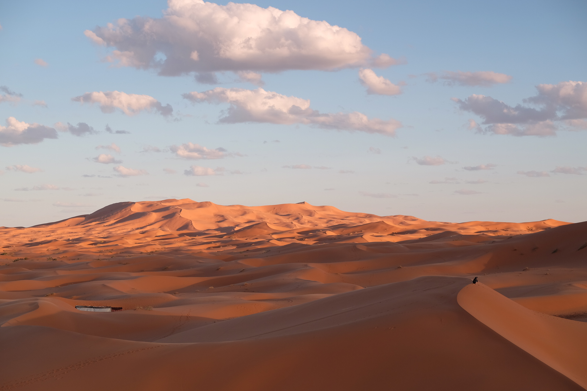 """The Sahara, meaning """"desert"""" in Arabic, is the largest hot-climate desert in the world."""