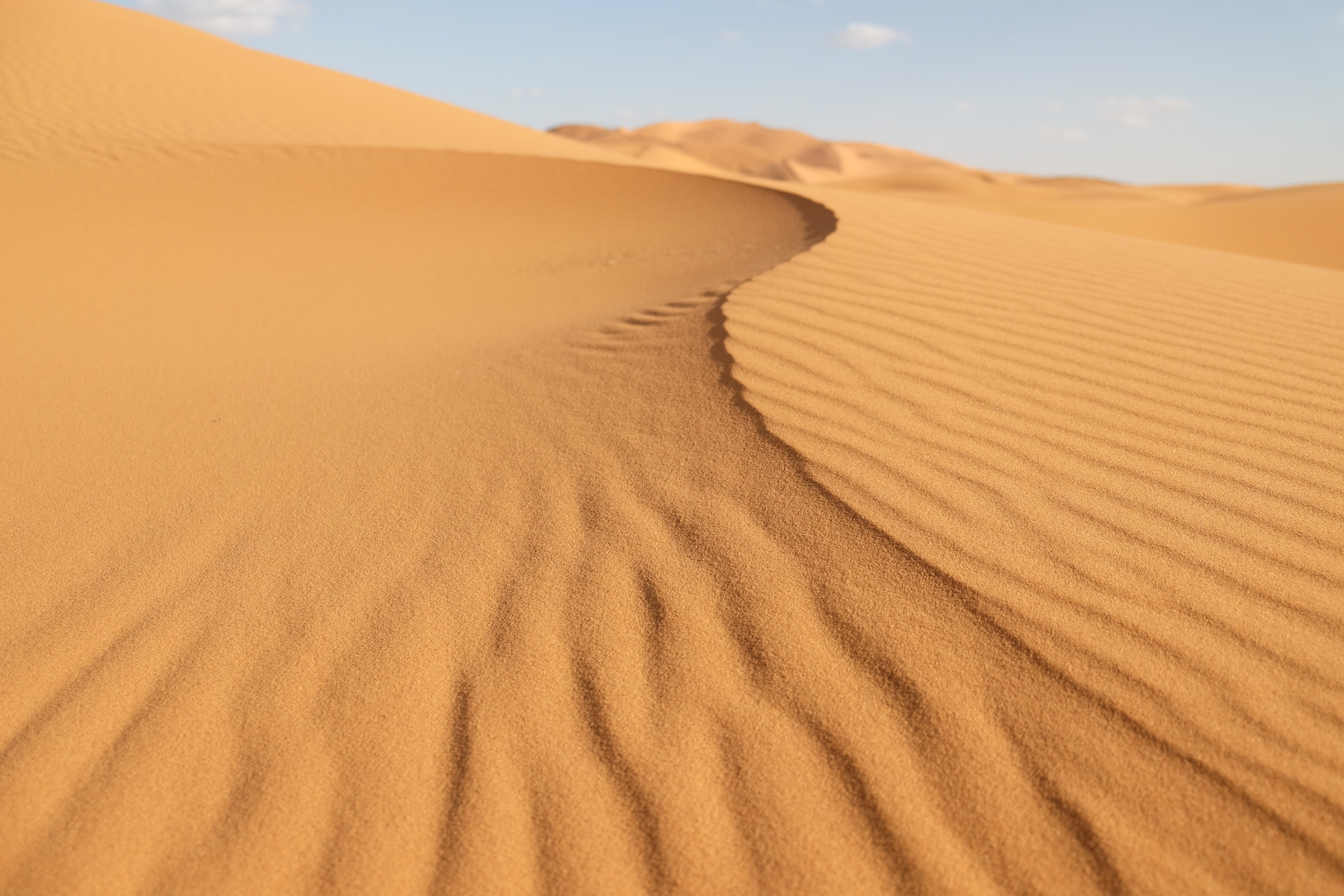The normally heavily shadowed curves, dips, hills, and valleys of the Sahara became soft, shadow-less twists and turns.