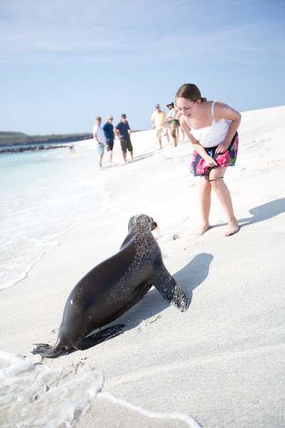 A sea lion shows he is as curious about this little traveller as she is about him.