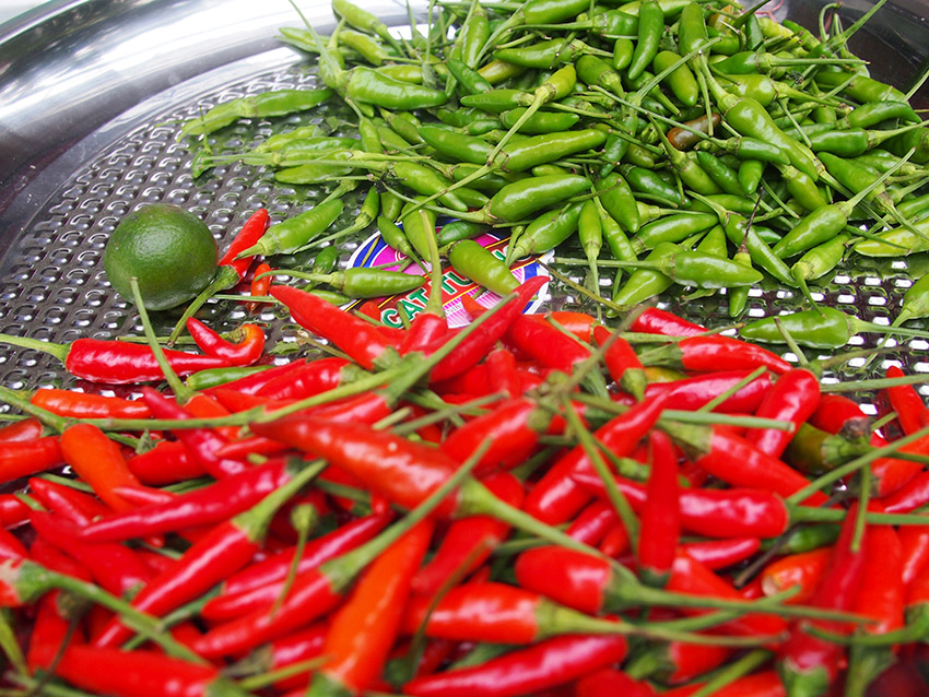 Often confused to be related to black pepper, the chili pepper belongs to the capsicum family.