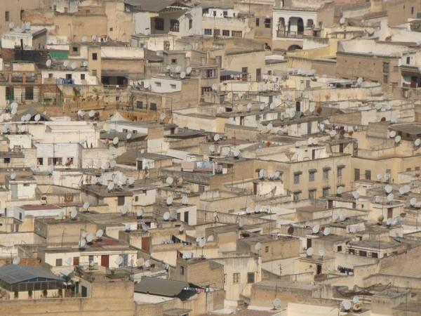 The roofs of Fez. Photo courtesy Kathy Meresz.