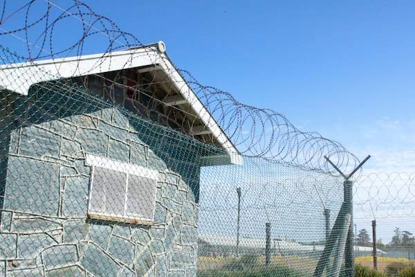 Get a history lesson with a trip to Robben Island.