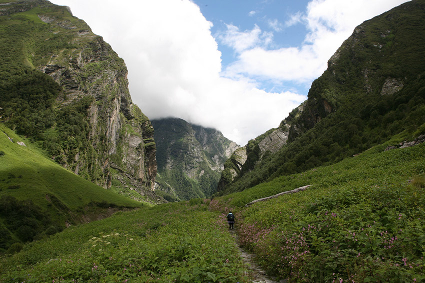 Taking a hike in Uttarakhand's Valley of Flowers. Photo courtesy Benjamin C.