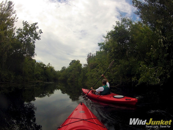 Kayaking in the Everglades.