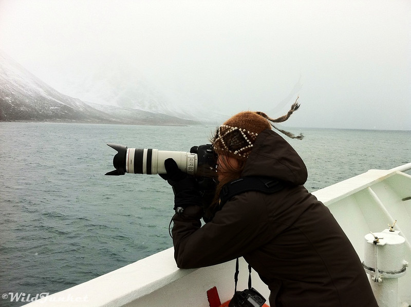 Taking the perfect shot of the Arctic on G's MS Expedition.
