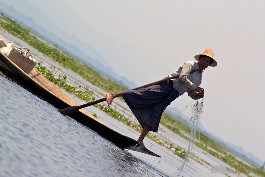 Myanmar's leg rowers have fished this way for generations.