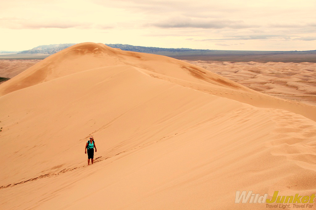 View from the top of the Khongoriin Els sand dunes.
