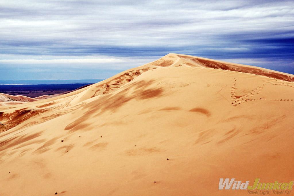 Khongoriin Els sand dunes in the Western Gobi.