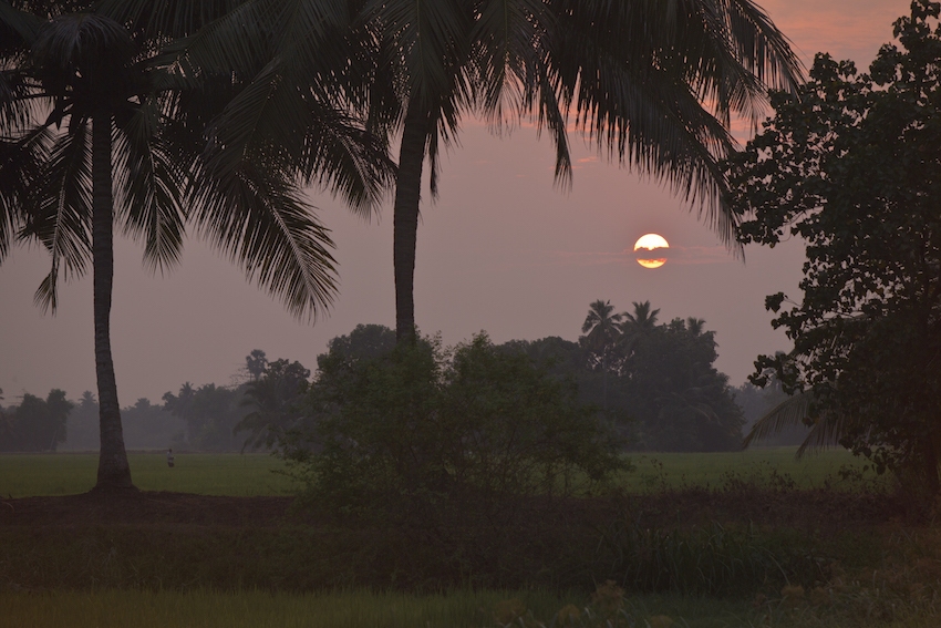 The sun sets on another day in Kerala.