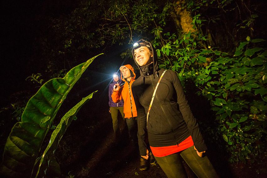 Pack a headlamp for times when electricity is not an option.
