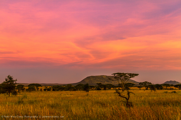 Tips For Taking Photos On An African Safari G Adventures