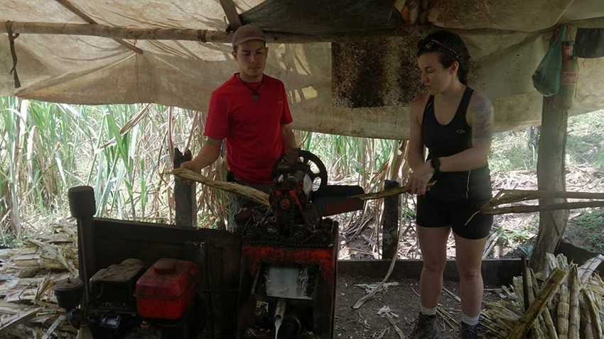 Making sugar cane candy in San Isidro
