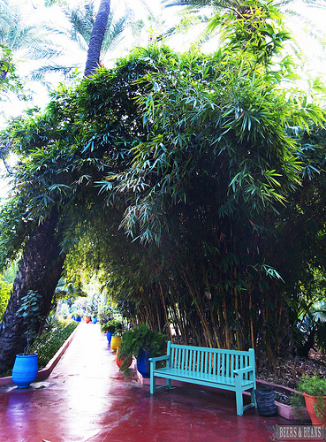 Top 4 must see attractions in marrakech g adventures - Jardin majorelle yves saint laurent ...