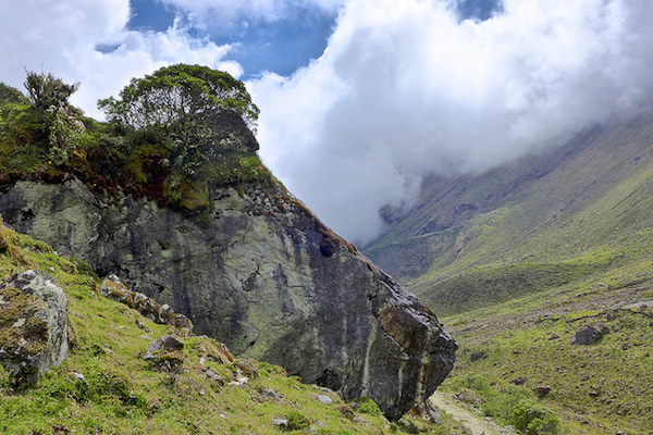 Walk right up to the clouds on the Salkantay trek. Photo courtesy Monty V.