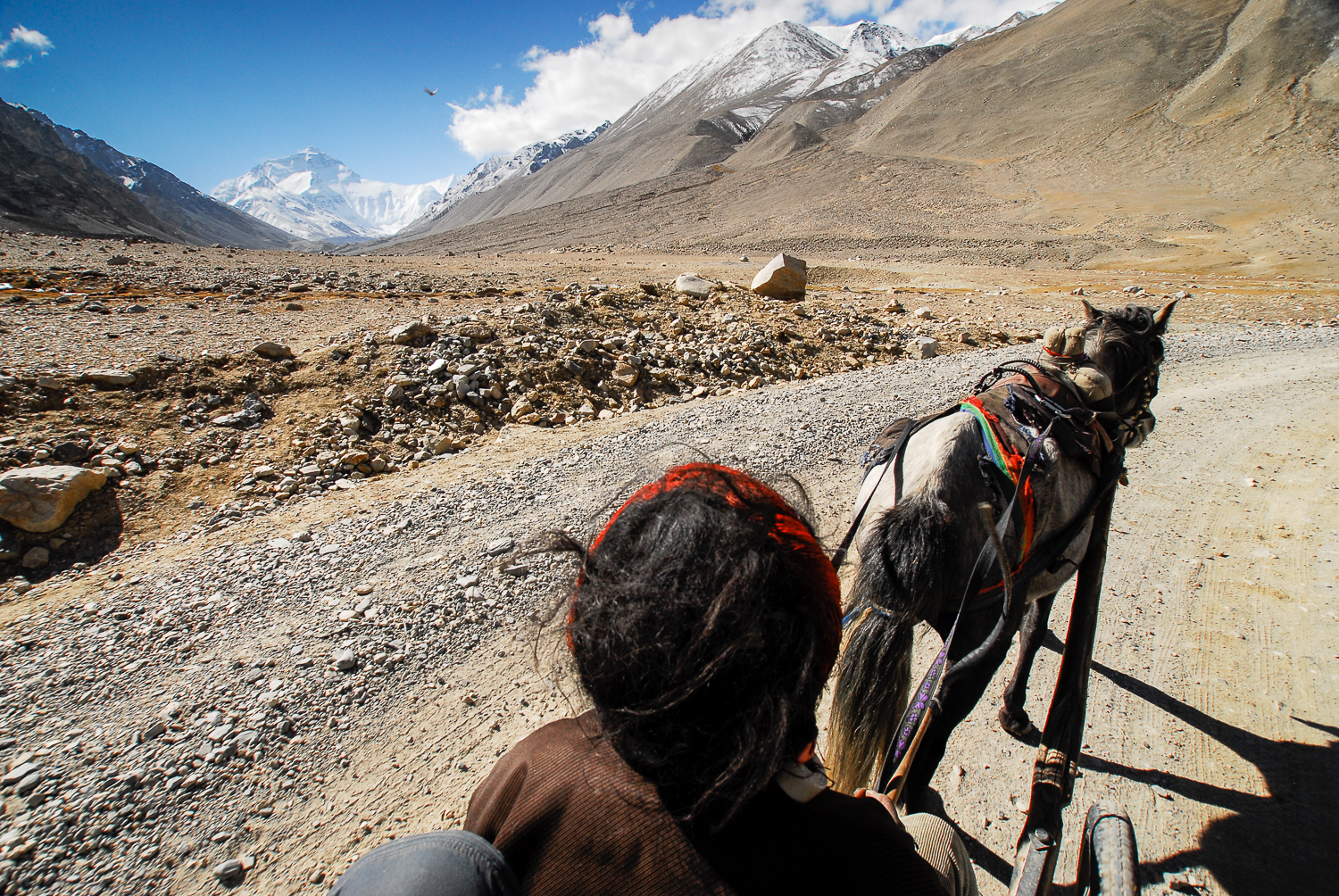 Taking a horse-drawn cart the final 4km or 2.5 mi to Everest Base Camp.